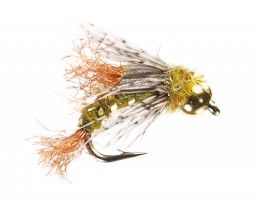 Caddis Nymphs